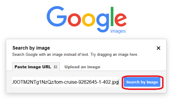 google reverse image search by pasting the image url