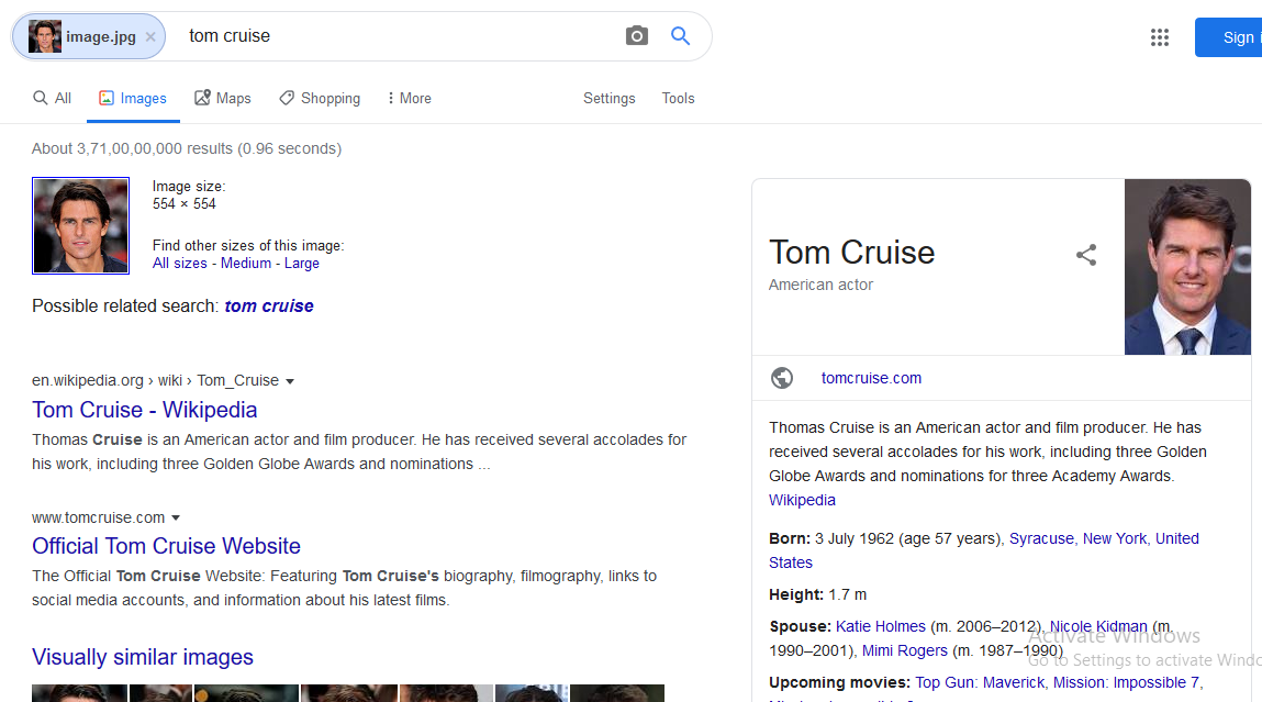 Google Reverse Image Search Results