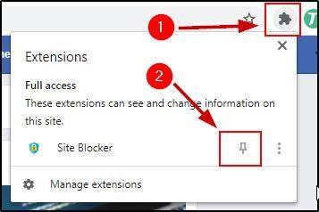 Chrome Extension Pin Option