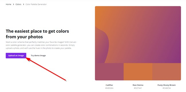 Upload Image On Canva To Find Colors